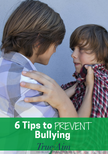 6 Ways to Prevent Bullying