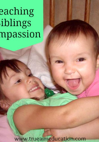 Teaching Siblings Compassion