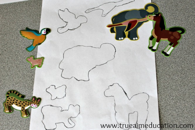 animal activities for kids, animal habitat puzzles