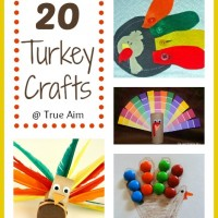 Mom's Library #69: 20 Turkey Crafts and Activities for Kids