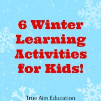 6 Winter Themed Learning Activities and Mom's Library #76