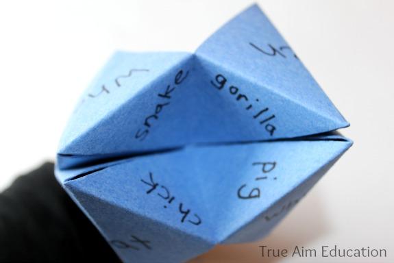 fortune teller open