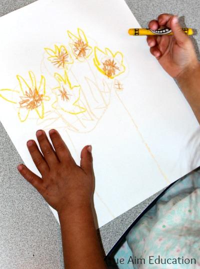beginning sunflower art project