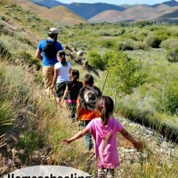 Homeschooling State by State: Homeschooling in Idaho