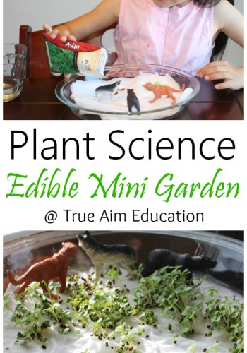 Plant Science Edible mini garden for kids