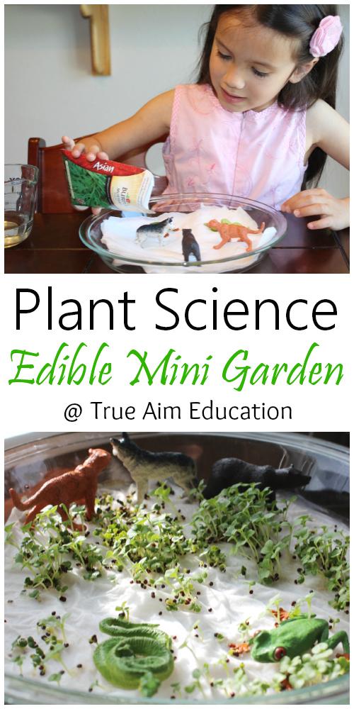 Plant Science Edible mini garden for kids