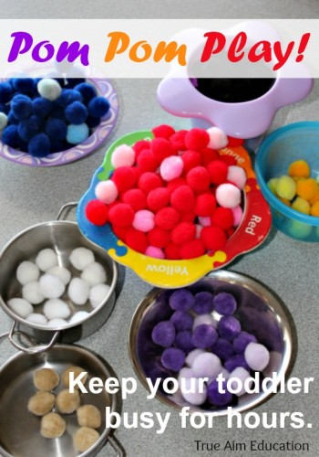 Simple Toddler Activity: Pom Pom Play