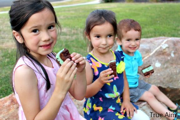 ice cream cookie picnic