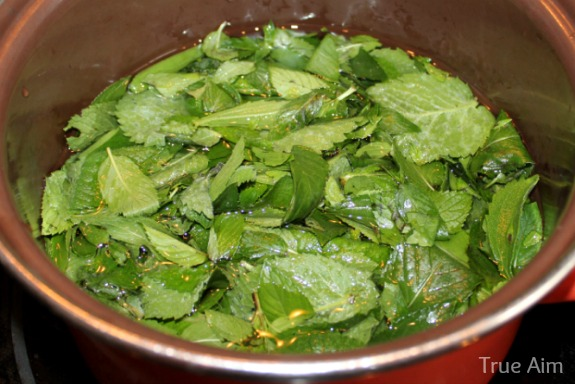 mint cooking for simple syrup