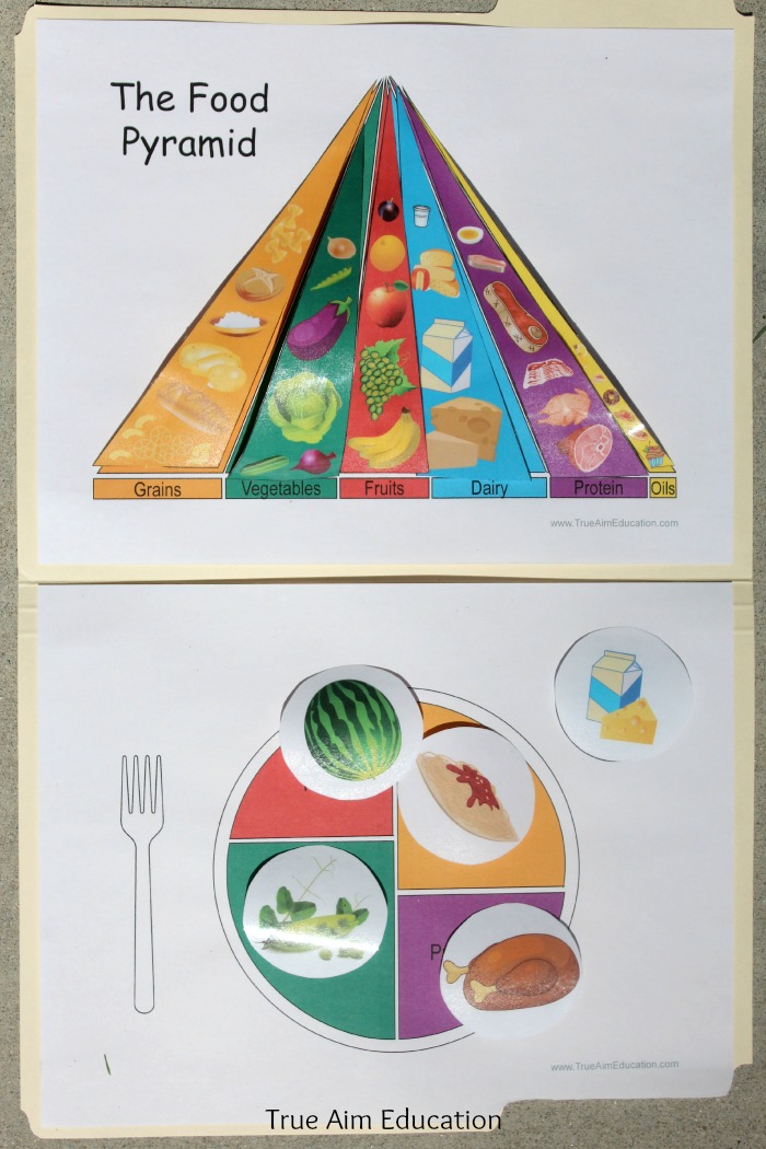 graphic about Food Pyramid for Kids Printable identified as Practice Healthier Alternatives: Food stuff Types Printable Report Folder