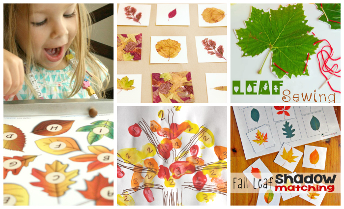 fall learning activities for kids with leaves