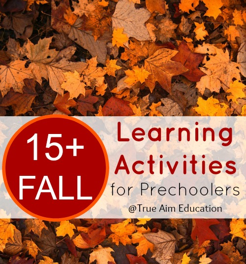 More Fall Learning activities for Preschoolers than you can imagine!