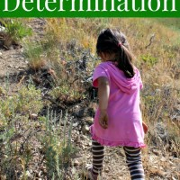 Values for Children: Determination
