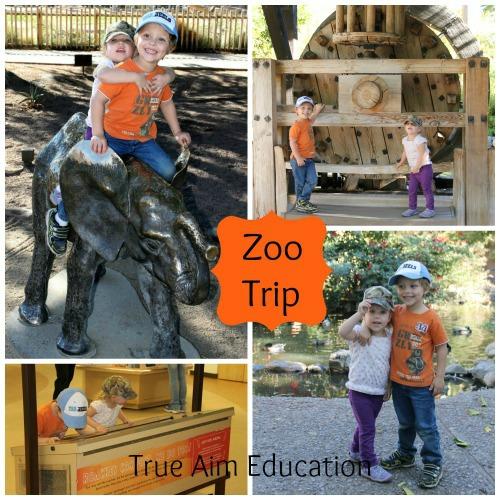 Family Zoo Trip as a Christmas Gift