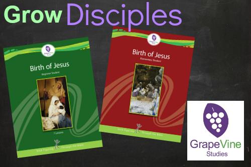 birth of jesus christmas study