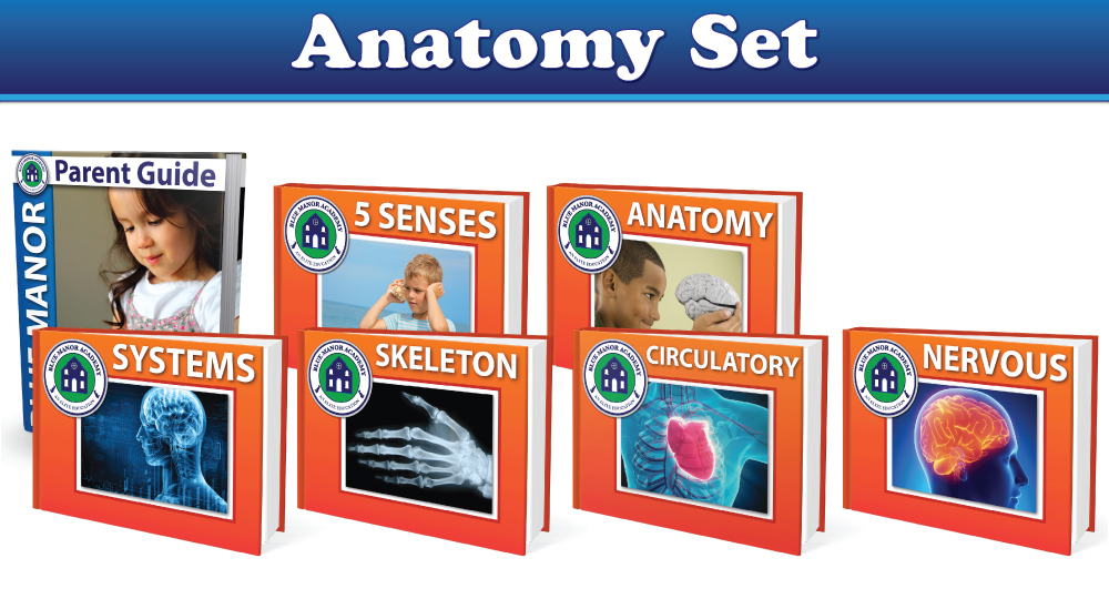 Blue Manor Anatomy Book Set
