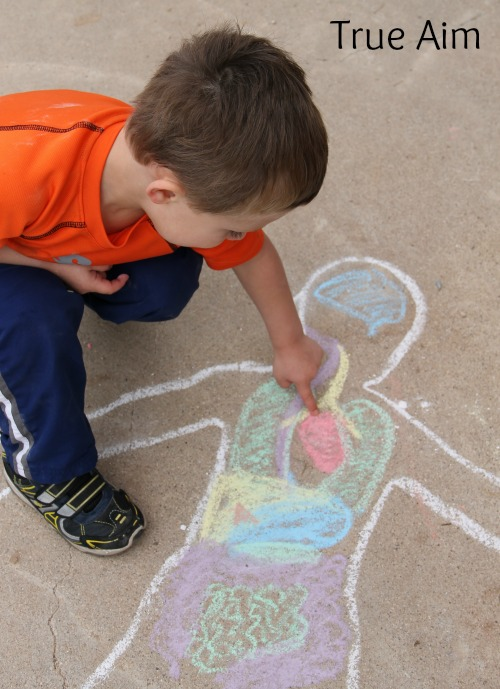 Preschool Anatomy Activity