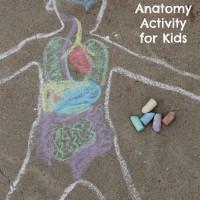 Sidewalk Chalk Anatomy Activity for Kids