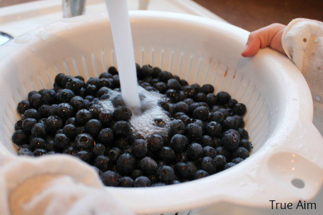 washing blueberries for homemade jam