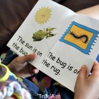 Free Preschool Printables: Insect Mini Pack