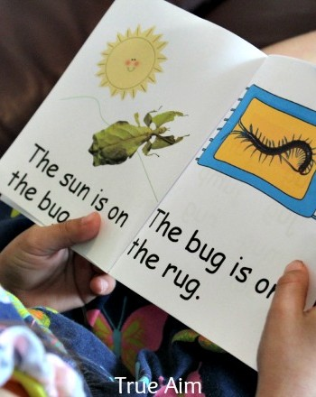 free bug early reader printables
