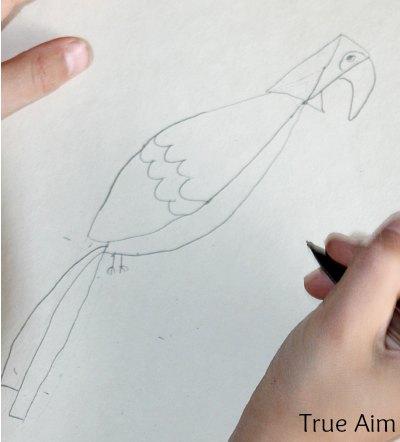 Kid Art Parrot Drawing