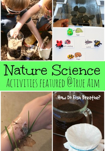 Nature Science Activities for Kids