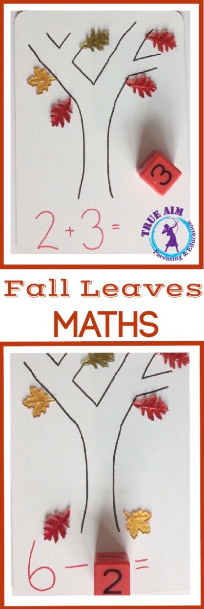Fall Leaves Math Activity for PreK and Kindergarten | True Aim