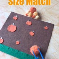 Pumpkin Patch Size Match