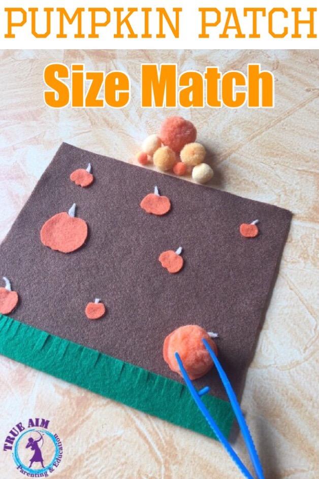 pumpkin patch size match
