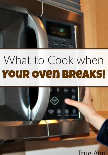 What to cook when your oven breaks - microwave meal ideas