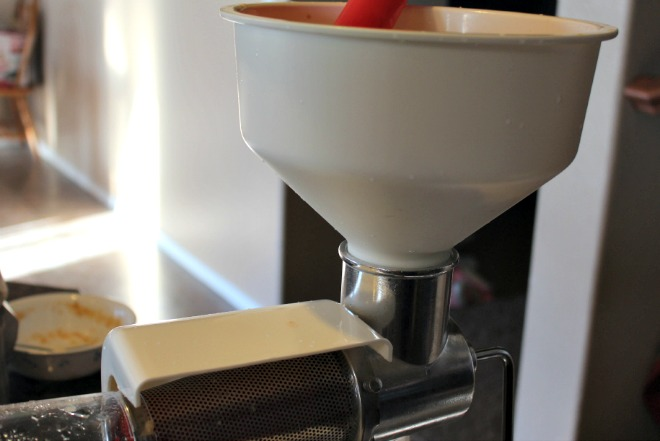 food strainer sauce maker