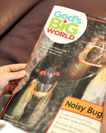 homeschooling with kids magazines