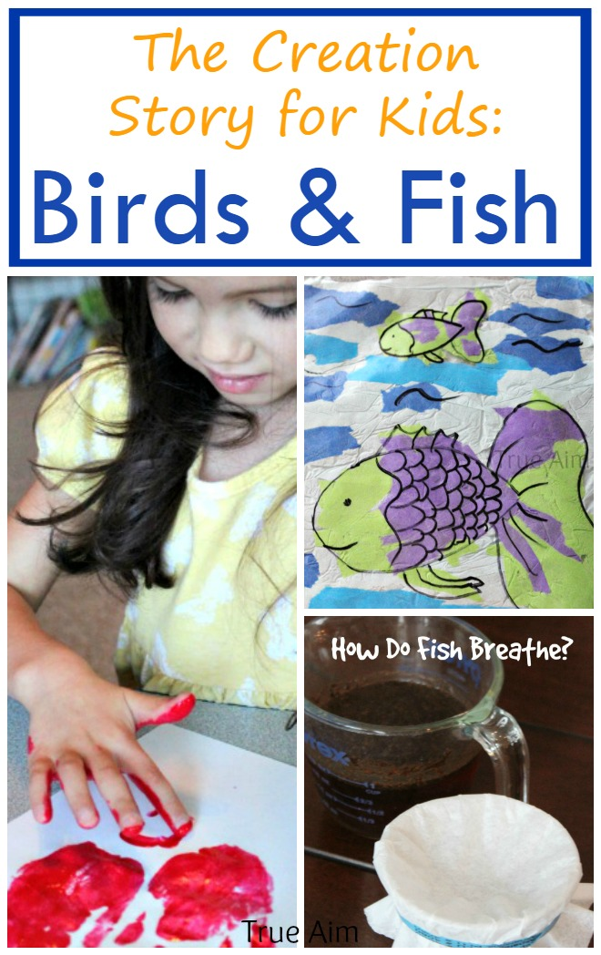 The Creation Story Birds & Fish - Crafts, Activity, and Experiment