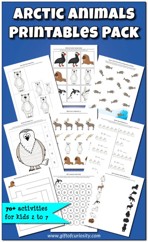 Arctic-Animals-Printables-Pack-Gift-of-Curiosity
