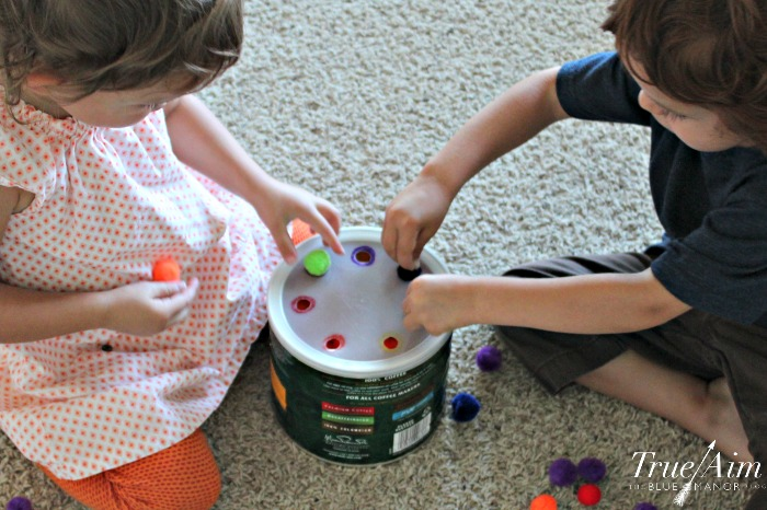 Pom pom fine motor color sorting activity for toddlers and preschoolers