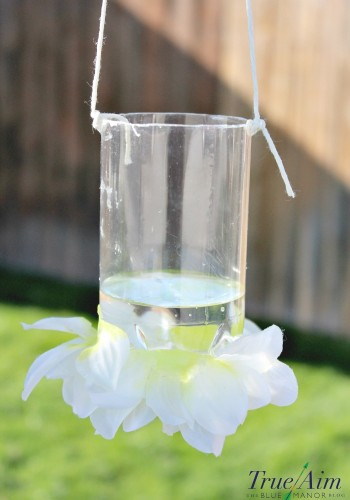 Earth Day Science: How to Make a Butterfly Feeder