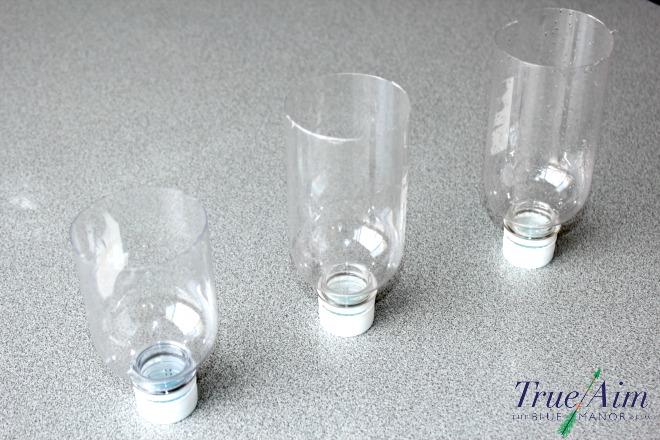plastic bottle bug search experiment