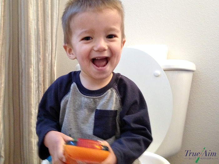potty training routine and tips