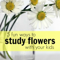 5 Fun Ways to Study Flowers with Your Kids