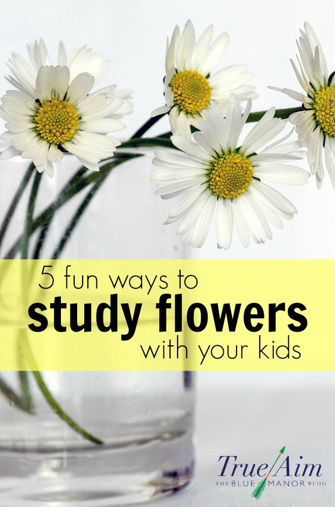 study flowers