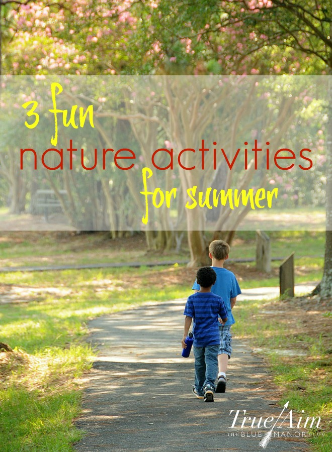 nature activities for summer