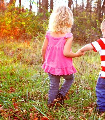 5 Fun Fall Nature Study Activities