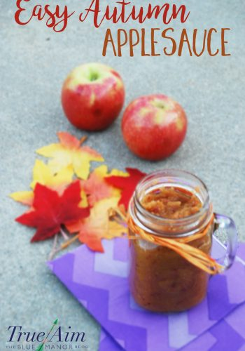 Easy Autumn Applesauce: Easy DIY Recipe for Fall