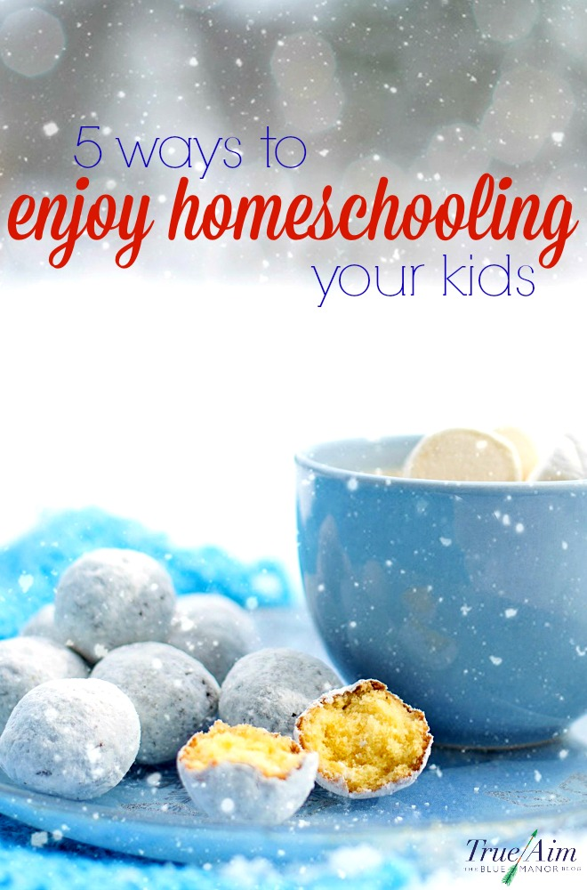 Christmas break is long over and summer break is months away. The kids are grumpy. Even the weather is gloomy. How can you enjoy homeschooling your kids in February?