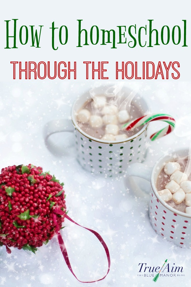 Have you noticed how the holidays get busier and busier? You always have so much to do! Find time to homeschool through the holidays with joy!