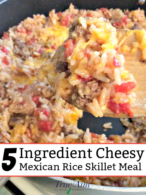 5 ingredient cheesy mexican rice skillet meal true aim i made this recipe out of necessity i only had these 5 ingredients in my kitchen im so glad because this cheesy mexican rice skillet meal is a new forumfinder Gallery