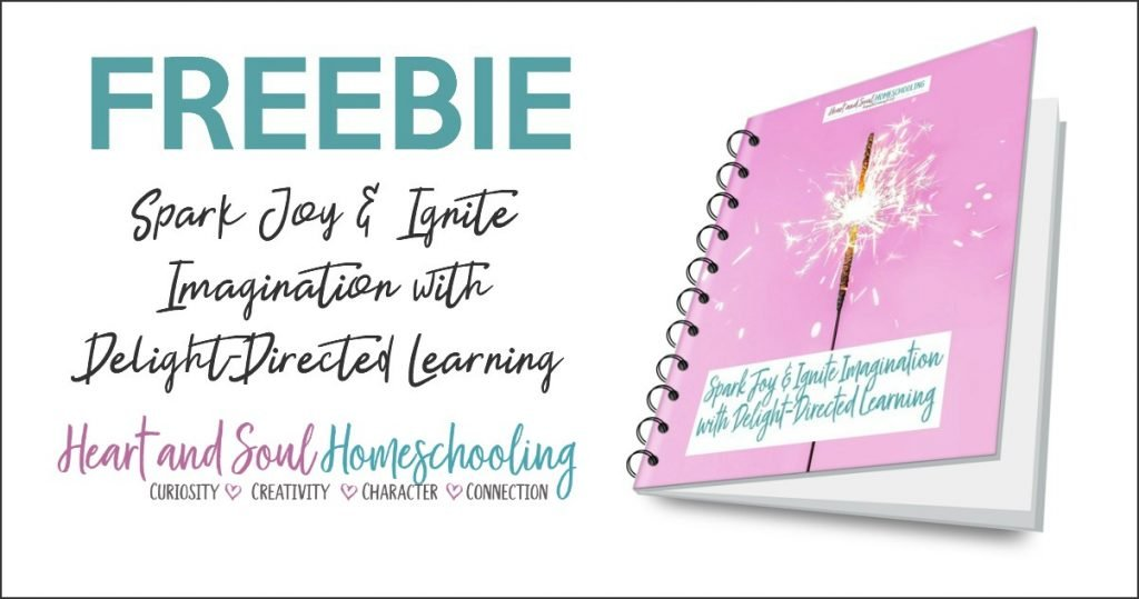 Delight directed homeschooling